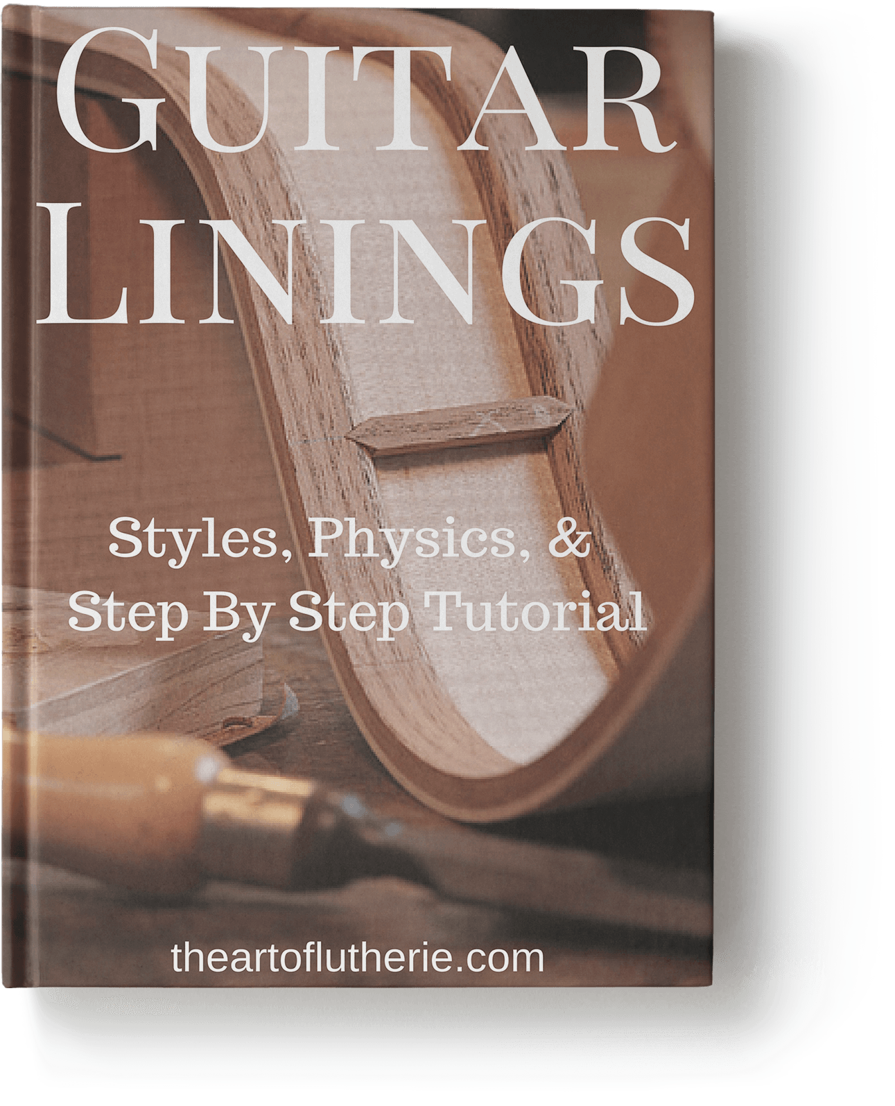 Guitar Linings - Book Cover