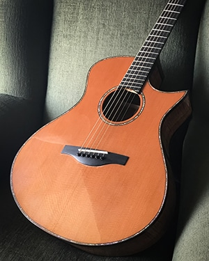 James Orr Guitar 300