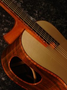 Elevated Fingerboard Steel String