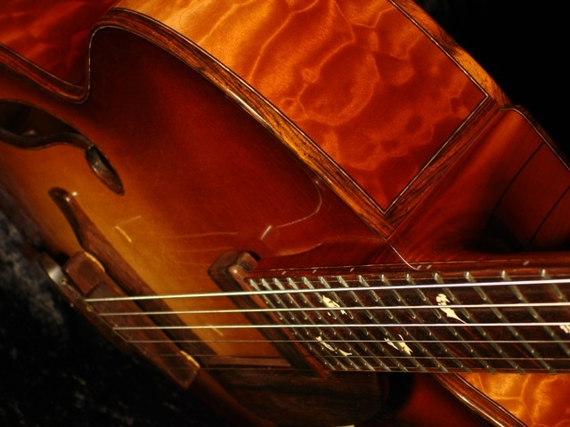 Natura Deluxe Archtop