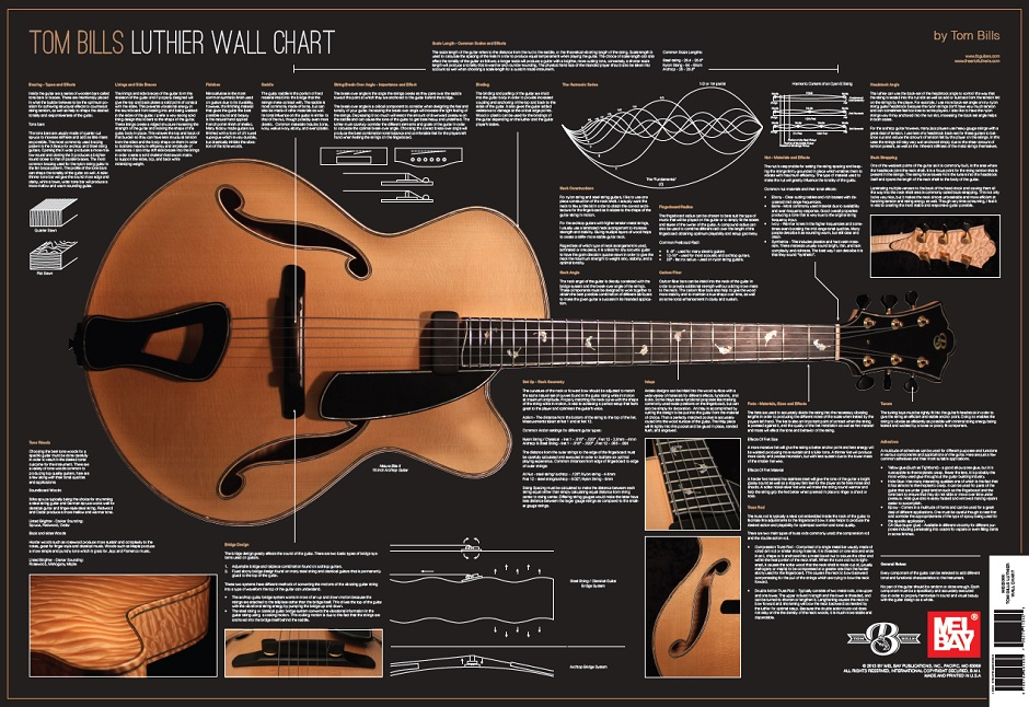 Luthier Wall Chart Post Image