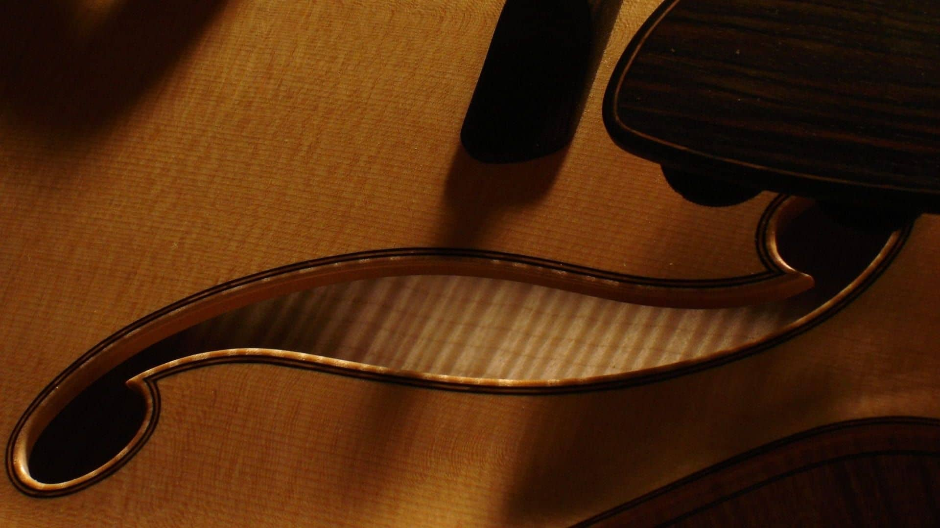 Sealing Inside Archtop Guitar