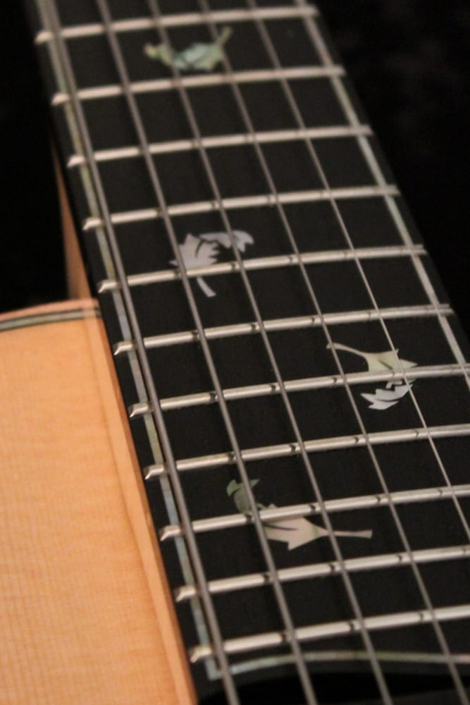Guitar Frets On Tom Bills Guitar